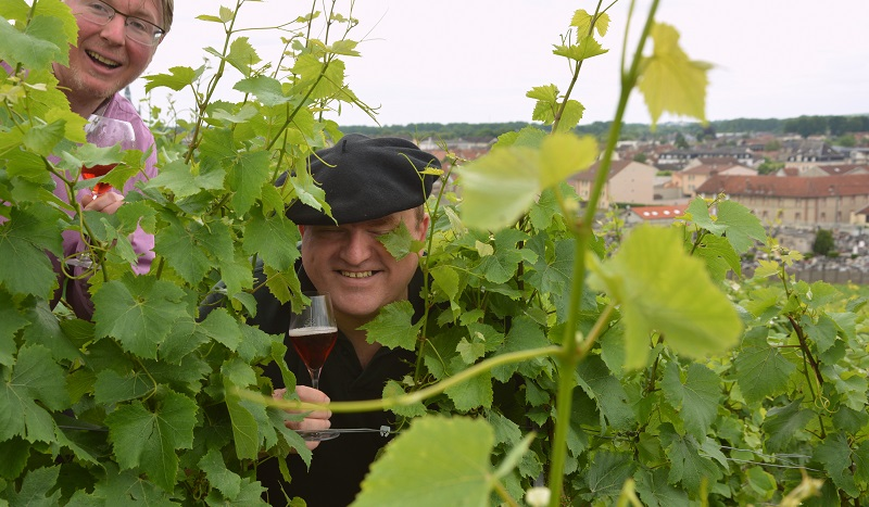 roger-brun-in-vineyard